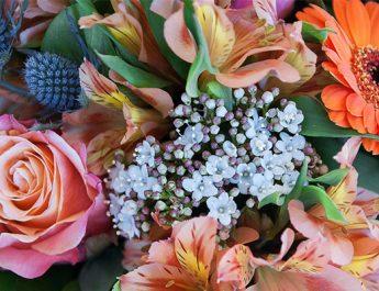 какви цветя да изберем