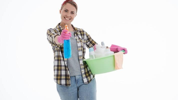 Помощ при почистване на домове